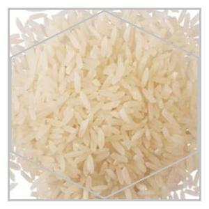 rizi-karolina